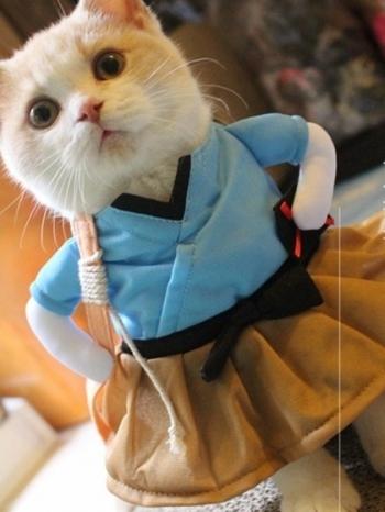 【Z436098】可愛日本蒲島太郎變身裝立體/站立造型寵物衣/貓咪狗狗衣服-Flourish