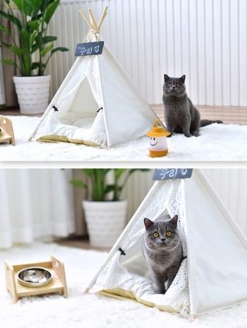 【Z436107】溫馨夢幻蕾絲風中小型犬寵物帳篷/寵物窩/貓狗窩/三角尖頂帳棚-Gnosis